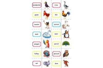"""Гра-доміно за темою """"Птахи"""" (Birds)"""